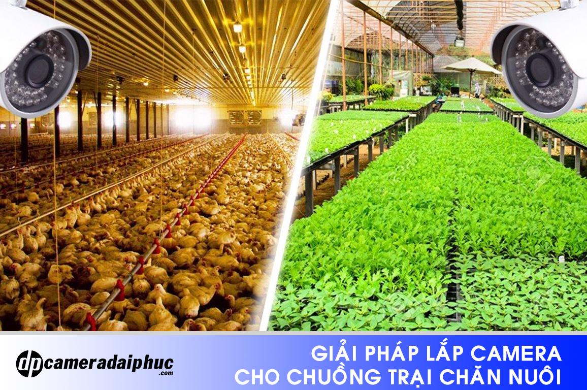 Giai-phap-lap-camera-cho-chuongtrai